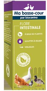 Aliment complémentaire Flore intestinale pour volaille