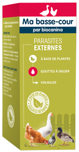 Parasites externes