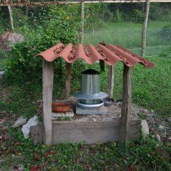 Mangeoires des poules : déjeuners sur l'herbe