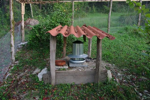 mangeoires des poules d jeuners sur l herbe ma basse cour. Black Bedroom Furniture Sets. Home Design Ideas